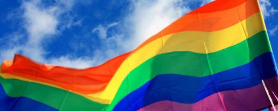 Izazovi u radu policijskih službenika na osiguravanju poštovanja prava LGBTI osoba